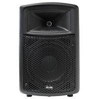 Zvučna kutija PA100